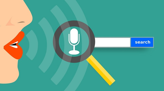 Voice and visual searches